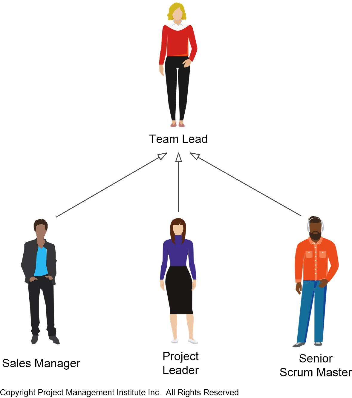 Disciplined Agile Team Lead Role