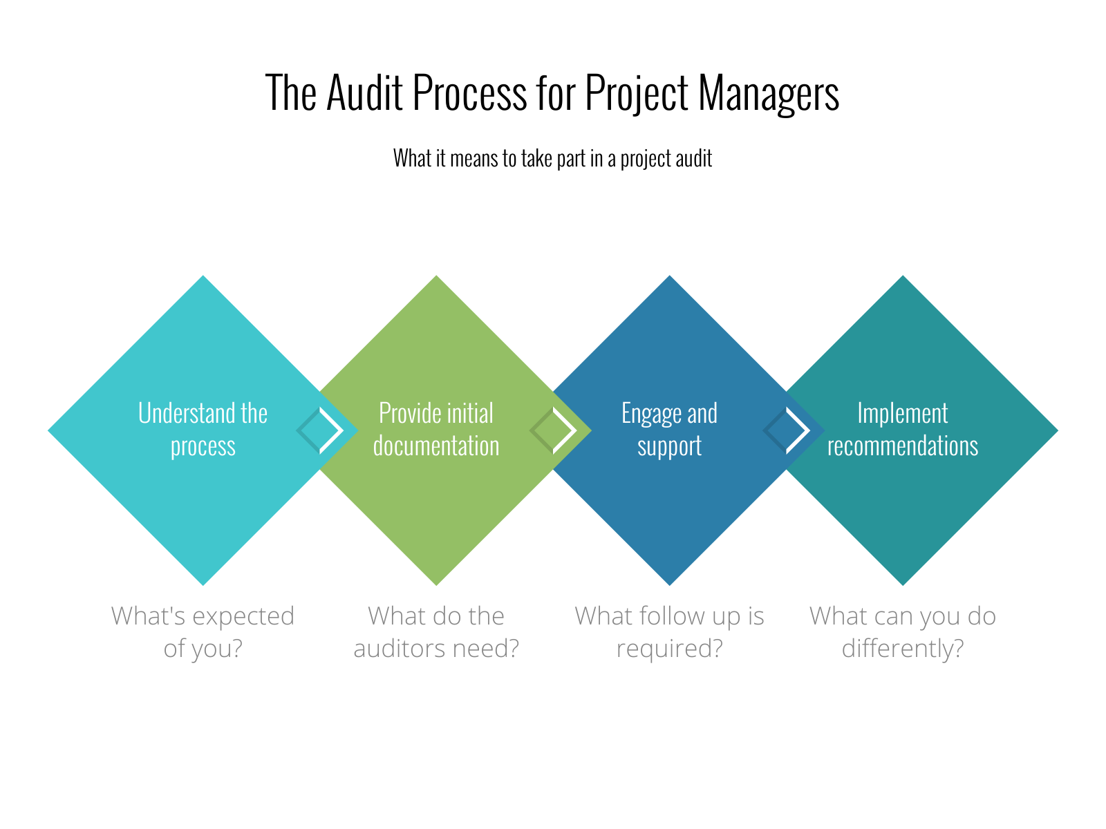 project audit process